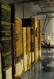 libri antichi e modelli matematici